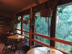 Yosemite Bug Rustic Mountain Hostel